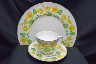 1a - Royal Crown Derby/Wedgwood - Kingcup