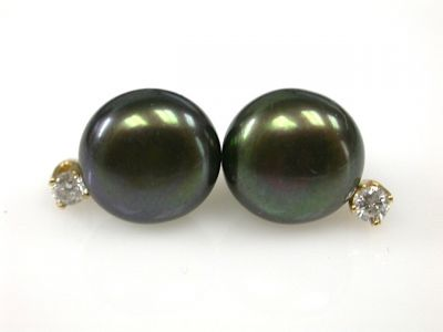 Black Pearls CFA1311366