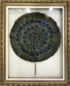 Vintage Peacock Feather Fan In A Shadow Box Frame