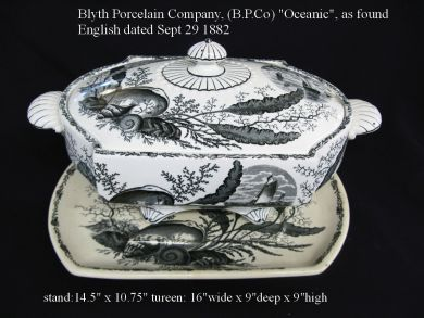 soup tureens/porcelain/oceanic